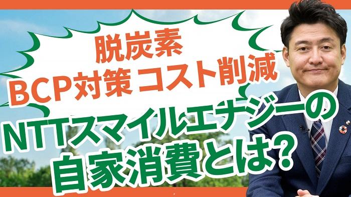 NTTスマイルエナジーの自家消費とは?